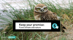 Burrowing owl with text: Keep your promise - Fund climate and nature