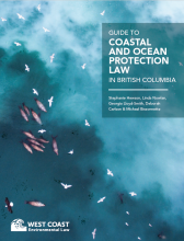 Ocean Law Guide - Cover Image (aerial of ocean wildlife/herring spawn)